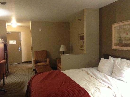 Comfort Suites Coralville: Spacious 1 room suite