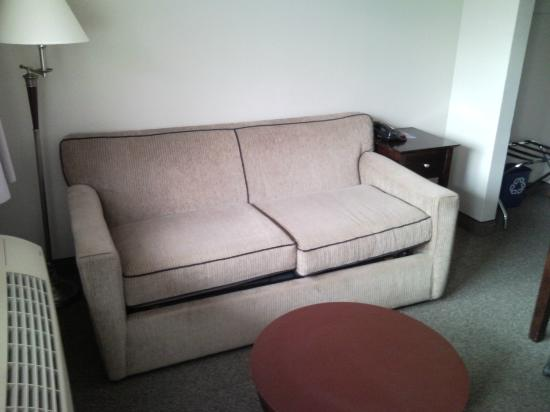 Saskatoon Thriftlodge: Our pull out couches featured in the Junior suite rooms.