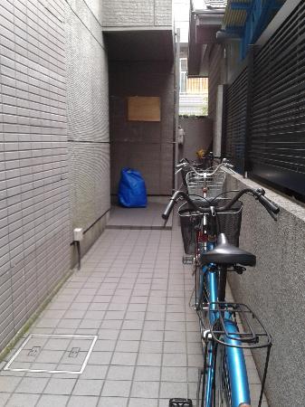 Asakusa Smile