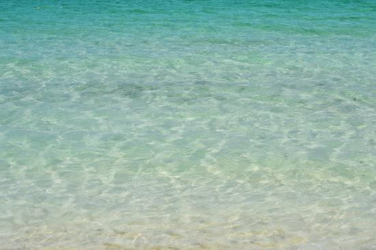 Taino Beach Resort & Clubs: the clear ocean water