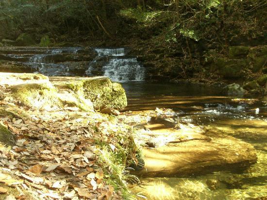 Akame Shijuhachi Waterfall: 雛壇滝