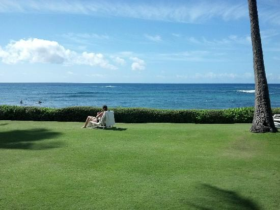 Kiahuna Plantation Resort: View from the giant grass area