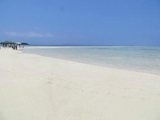 Malolo Island Resort: Malolo Sandbar