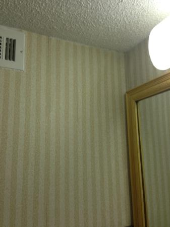 Clarion Hotel: gross wallpaper