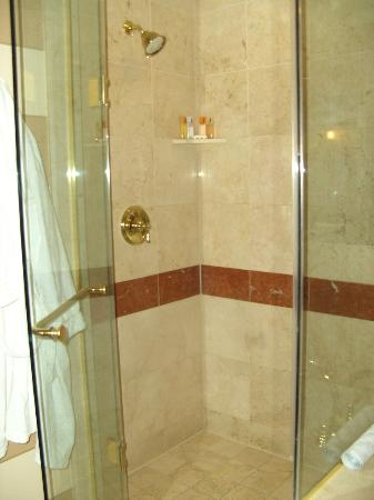 The Venetian Las Vegas: shower