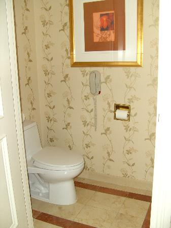 Venetian Resort Hotel Casino: water closet