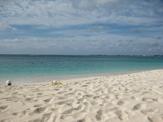 Seven Mile Beach: The beach is pristine! White sand and gentle water.