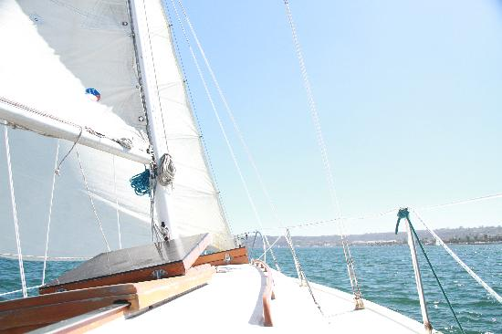 San Diego Boat and Sailing Charters