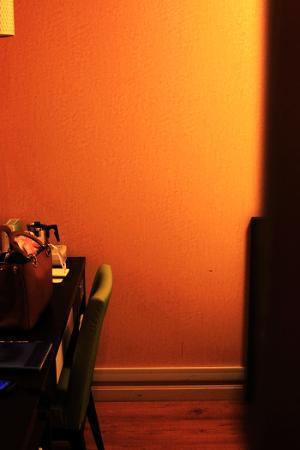 Dotonbori Hotel: room