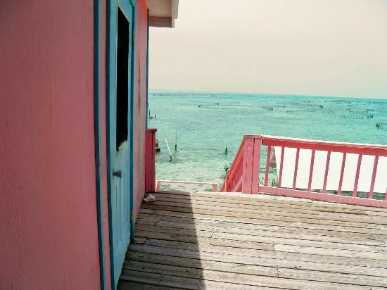 Caicos Conch Farm: view from deck