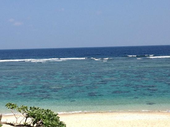 Yoshino Coast: 砂浜近くまで珊瑚礁が迫る吉野海岸