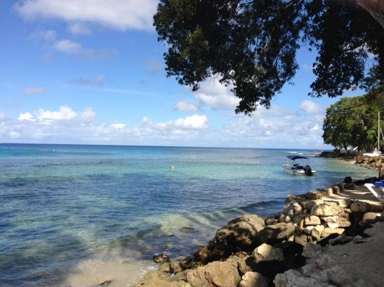 The Club, Barbados Resort and Spa : seafront at the hotel
