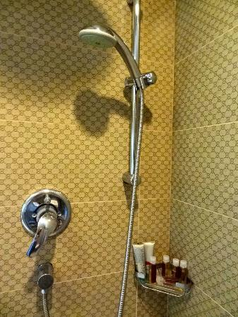 Kingston Suites Bangkok: small shower
