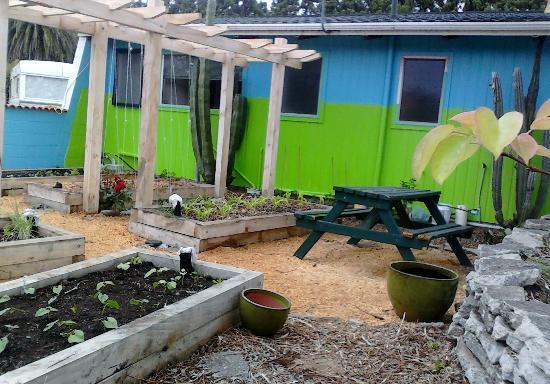 Katikati Motel: The Perma-Culture garden
