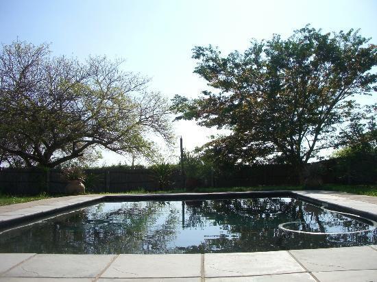 Blue Anchor Inn: Pool Area