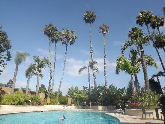 Radisson Hotel Newport Beach: The pool.