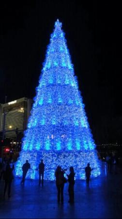 Best Christmas Tree Sales