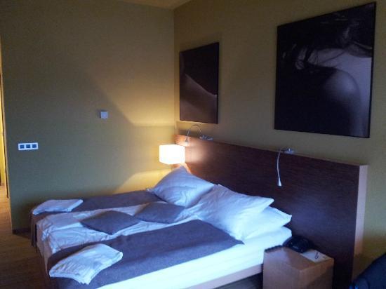Hotel Sotelia: Room