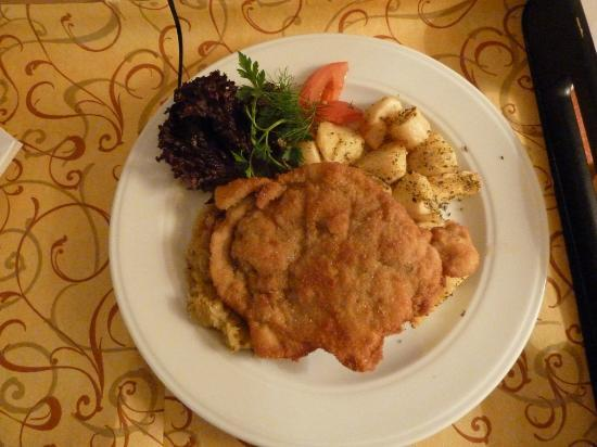 Hotel Orbis Wroclaw: Photo of Schnitzel from room service