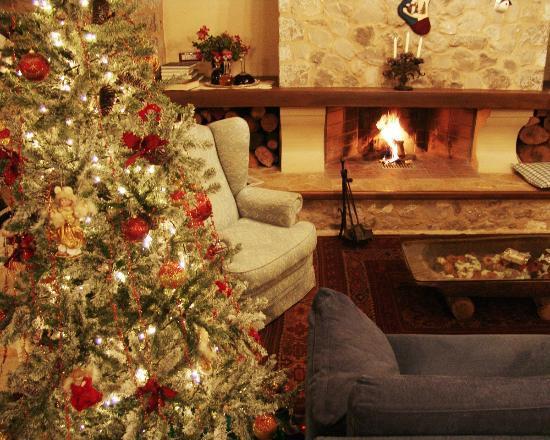 DADI Parnassus Mansion: The fireplace