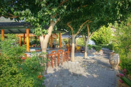 Sunny Garden bar - Picture of Sunny Garden Apartments, Epidavros ...