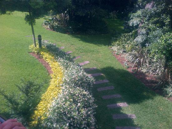 The Marion on Nicol : back garden