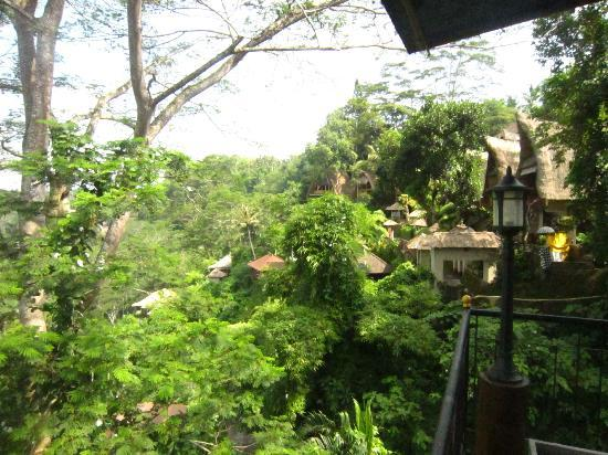 Puri Bunga Resort and Spa: View from the restaurant