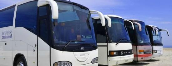 Kelenis Tours: Our buses