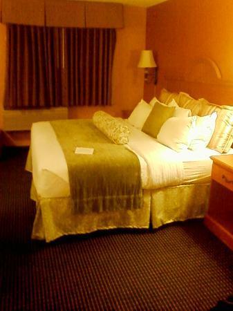Best Western Pioneer Inn & Suites: kingsize