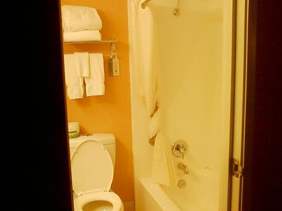 Best Western Pioneer Inn & Suites: small bathroom