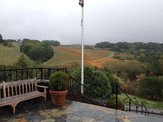 Chalk Hill Winery: the rare rainy day