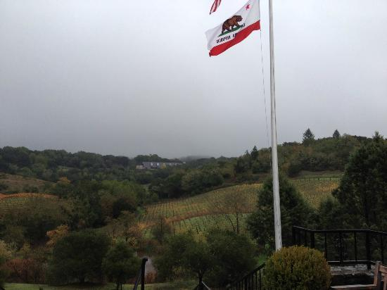 Chalk Hill Winery: the view