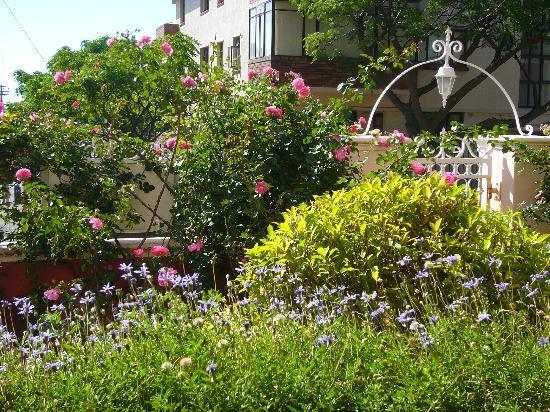 The Villa Rosa: Front Garden