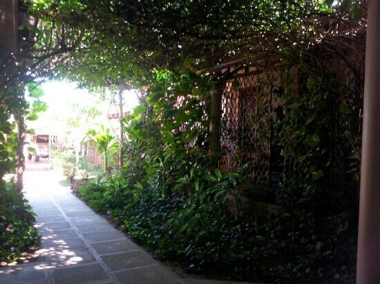 Sun Sothy Guesthouse: autre coin du jardin, à l'ombre