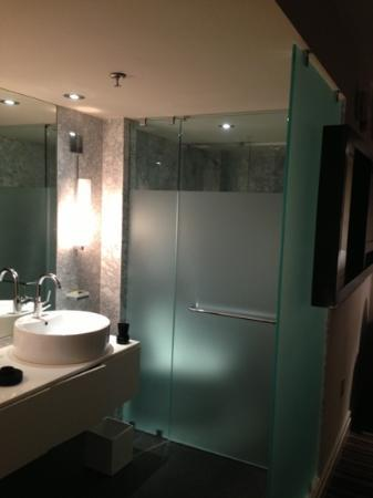 The Dupont Circle: bathroom - awesome shower