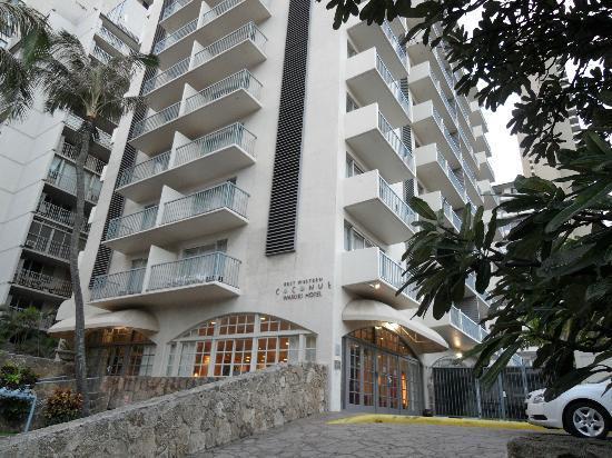 最佳西方威基基椰子酒店照片