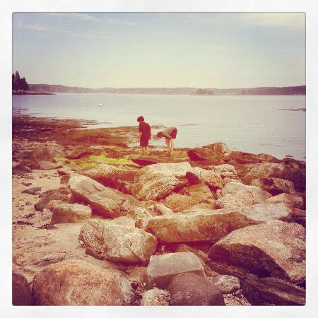 Spruce Point Inn Resort and Spa: My son loved searching for Sea Glass