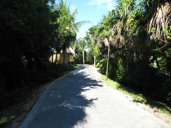 Grand Bahia Principe Coba: Sentier