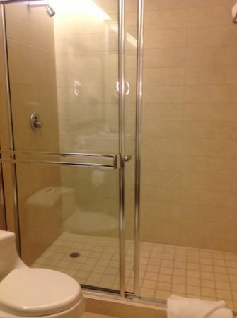 TRYP Panama Centro: Shower