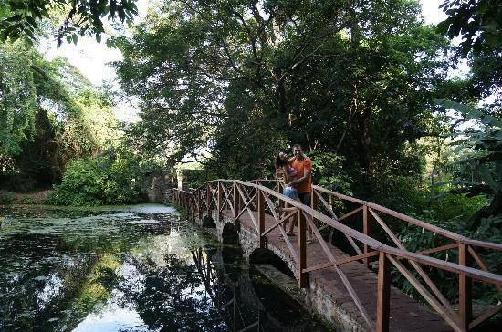 Ngare Sero Mountain Lodge: Cute bridge to the village over the spring