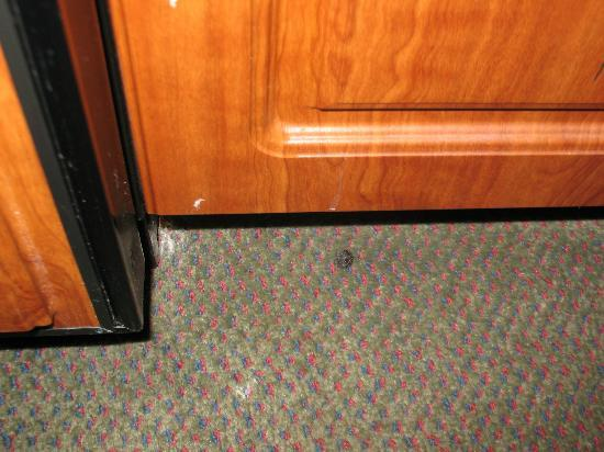 "Hawthorn Suites by Wyndham Bloomington: Area in front of ""kitchenette"" dirty and crusty and smelly...and not clean."