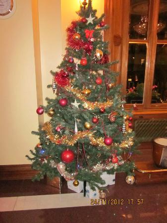Abbey Court Hotel: Tree in reception