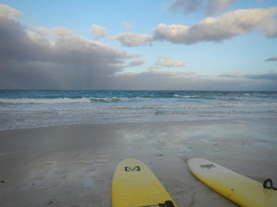 Aloha Surf Academy: Sunset @ Flagbeach
