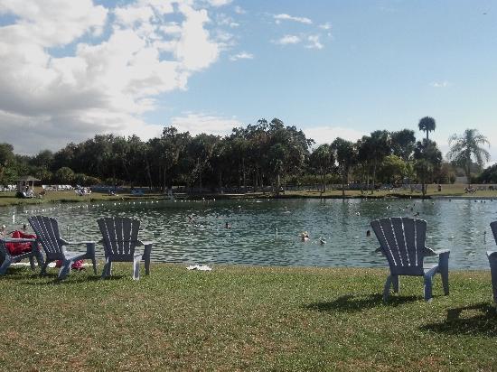 North Port, FL: the spring