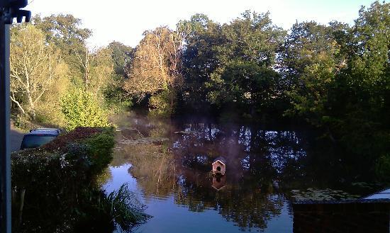 Eggpie B&B at Pond Cottage : l'étang vu de la chambre