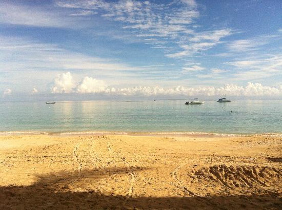 ClubHotel Riu Ocho Rios: beach!