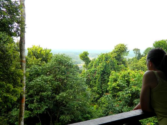 The Last Frontier Boutique Resort: View from the lodge