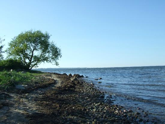 Molmare : Seaside