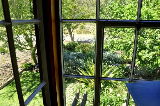 Aasvoelkrans Bed and Breakfast: Looking out of the window at breakfast