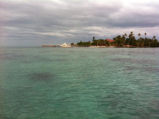 Hatchet Caye Resort: View of the island from the ocean....